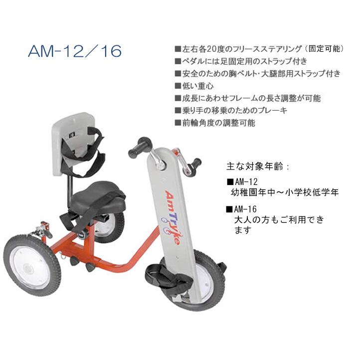 am12_