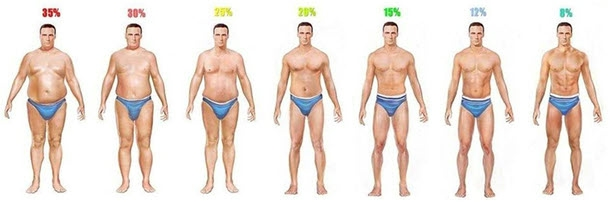 percent_body_fat